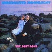 THE SOFT BOYS - Underwater Moonlight