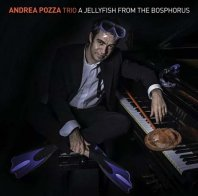 ANDREA POZZA TRIO - A Jellyfish From The Bosphorus